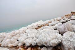 Det döda havet seglar utmed kusten 1 Royaltyfria Foton