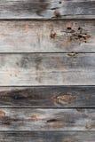 Det detaljerade fragmentet av träbakgrunden med den mäktiga strukturen, bakgrund Arkivfoton