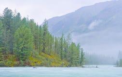 Det dimmiga berg landskap med floden royaltyfri foto