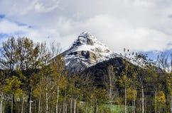 Det djupfrysta berget royaltyfria bilder