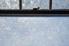 Det djupfrysta fönstret förser med rutor fönsterramlåset arkivfoton
