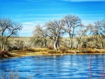Det djupfrysta fiskedammet flankeras av Bare träd i denna sceniska vinter Arkivfoton