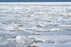 Det djupfrysta havet, betesmark vek i stycken på en klar dag Fotografering för Bildbyråer