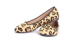Det djura trycket Shoes serien #4 Arkivbilder