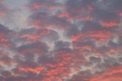 Det dramatiska röda himmelmolnet, röd himmel på solnedgången, röd himmelsolljusbakgrund, föroreninghimmel fördunklar naturkatastr royaltyfri foto