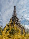 Det Eiffel tornet i fjädern france paris Fotografering för Bildbyråer