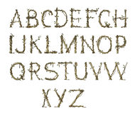 det eleganta alfabetet fattar Arkivbild