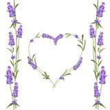 Det eleganta kortet för lavendel med ramen av blommor och textstället Lavendelgirland för din textpresentation arom vektor illustrationer