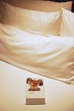 Det enkla jordnöt- & tryffelchokladmellanmålet tjänade som som ett tecken av gillande på storleksanpassad säng för lyxigt hotell  Arkivfoto