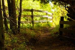 Det ensamma staketet Royaltyfria Foton