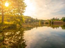 Det ensliga gamla stora trädet med frodiga gröna blad på det bruna vårfältet reflekterade i vattnet Upplyst landskap förbi Royaltyfria Bilder