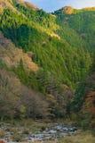 Det färgrika berget på Korankei - Asuke, Japan Arkivfoton