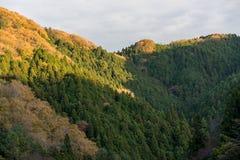 Det färgrika berget på Korankei - Asuke, Japan Royaltyfri Foto