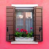 Det färgrika bostads- fönstret med att blomma blommar i Burano Royaltyfria Bilder