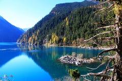 Det färgrika höstlandskapet av den Jiuzhaigou nationalparken royaltyfria foton