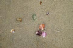 Det färgrika havet beskjuter i den bästa sikten för sand Arkivbilder