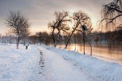 Det färgrika landskapet på vintersoluppgången parkerar in Arkivfoton