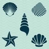 det fästande ihop isolerade banahavet shells white Royaltyfri Fotografi