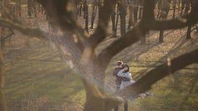 Det förälskade paret går i skogen på solnedgången stock video