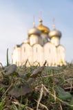 Det första vårgräset i den Novodevichy kloster i Moskva Arkivbild