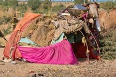 Det fattiga området i öknen nära Pushkar, Indien Royaltyfri Bild