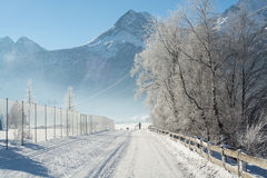 Det fina vinterberglandskapet solig dag Vinternedgång De ljusa färgerna Flod för vinterskogskog Filialer i hoar Royaltyfria Foton