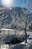 Det fina vinterberglandskapet solig dag Vinternedgång De ljusa färgerna Flod för vinterskogskog Filialer i hoar Arkivbild