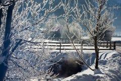 Det fina vinterberglandskapet solig dag Vinternedgång De ljusa färgerna Flod för vinterskogskog Filialer i hoar Arkivbilder