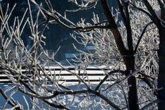 Det fina vinterberglandskapet solig dag Vinternedgång De ljusa färgerna Flod för vinterskogskog Filialer i hoar Royaltyfria Bilder