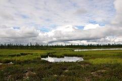 Det finns sjön i den gröna ängen Det finns många vita moln i mörkret - blå himmel Arkivbild