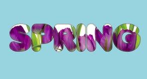 Det finns text för blommor på våren Fotografering för Bildbyråer