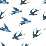 Det finns underbara blåa svalor på en vit bakgrund royaltyfri illustrationer