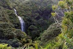 Det flyg- landskapet av Karekare faller Nya Zeeland Royaltyfri Foto