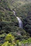 Det flyg- landskapet av Karekare faller Nya Zeeland Fotografering för Bildbyråer