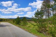 Det forested bergiga landskapet nära sjön Laka, Prášily, Šumava, Tjeckien royaltyfri fotografi
