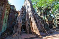 Det forntida fördärvar av en historisk en khmertempel i tempelcomplen Arkivfoto