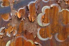 Det forntida mönstrade gammala wood förfallet. Royaltyfria Foton