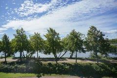 Det fridfulla landskapet Royaltyfri Bild