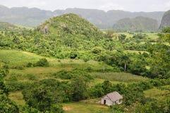 Det frodiga landskap av Vinales, Kuba Royaltyfria Foton