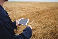 Det fundersamma bondeanseendet med armar korsade i fältet Arkivfoton