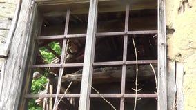 Det gamla brutna fönstret med stänger på den gamla stugan arkivfilmer