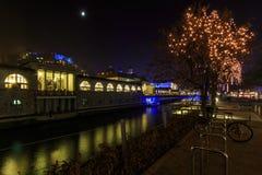 Det gamla centret av Ljubljana dekorerade för jul Royaltyfria Foton