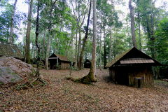 Det gamla huset i skog royaltyfri foto