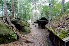 Det gamla huset i skog arkivfoton