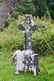 Det gamla keltiska korset på kyrkogården av den Muckross abbotskloster fördärvar, Irland Arkivfoto