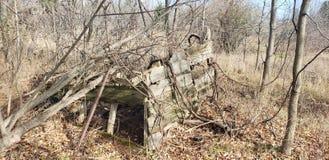 Det gamla lantgårdskjulet återvinner av naturen royaltyfria foton