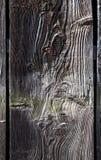 Det gamla mörka träbrädet, plankan, closeup, med naturliga modeller som drogs från vädret, abstrakt begrepp, texturerade bakgrund royaltyfri bild
