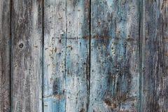 Det gamla red ut träbrädet med rostigt spikar Arkivbild