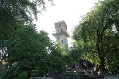 Det gamla tornet som omges av gröna träd Arkivbild