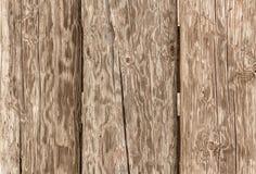 Det gamla trästaketet, torkar bräden textur Royaltyfria Bilder